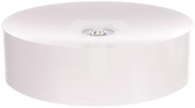 Oprawa awaryjna AXN IP65 LED 6W 590lm (opt. otwarta) 1h jednozadaniowa biała